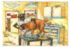 Beim-Tierarzt