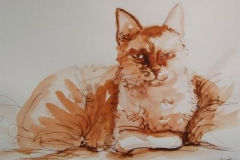 Katzerote-Tusche